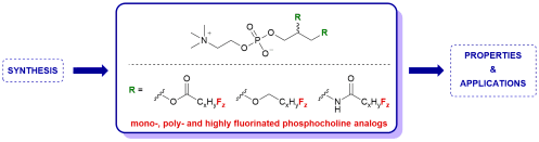 small resolution of gagnon m c auger m paquin j f progress in the synthesis of fluorinated phosphatidylcholines for biological applications organic biomolecular