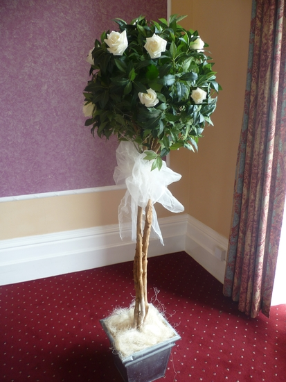 wedding chair covers with bows hanging ikea cover hire bristol, avon, wiltshire