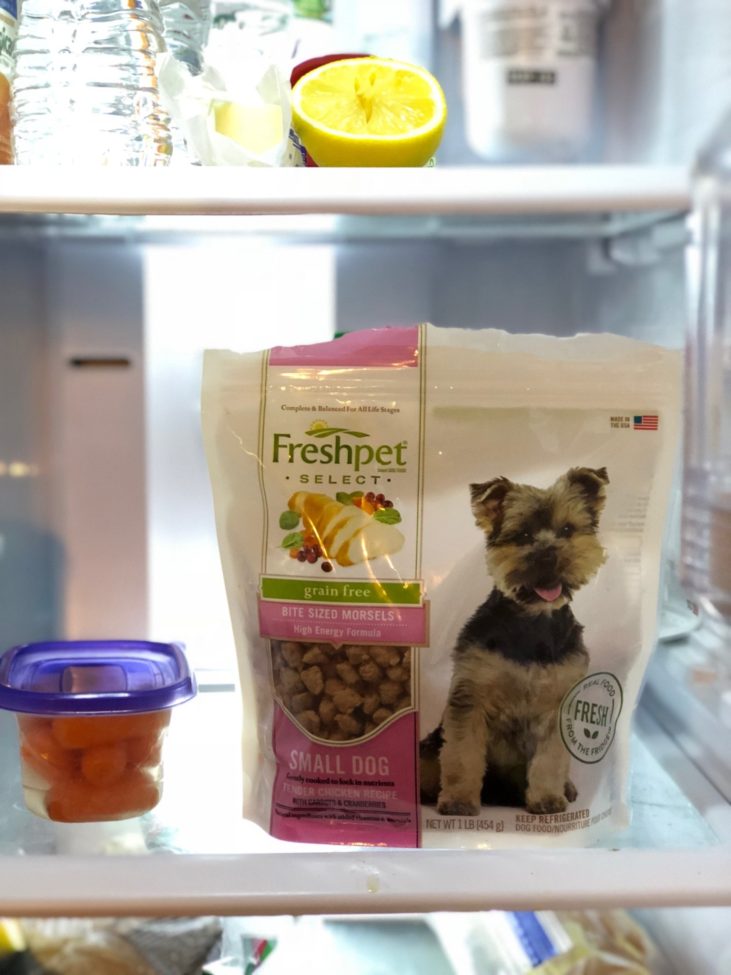 Lifestyle Blog Chocolate and Lace shares her review of Freshpet Dog Food.