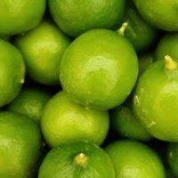 Fresh Key Limes 3 lbs.