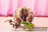 Chocolate Koalas, Chocolate Drops, Yanchep - © MADCAT Photography 2014