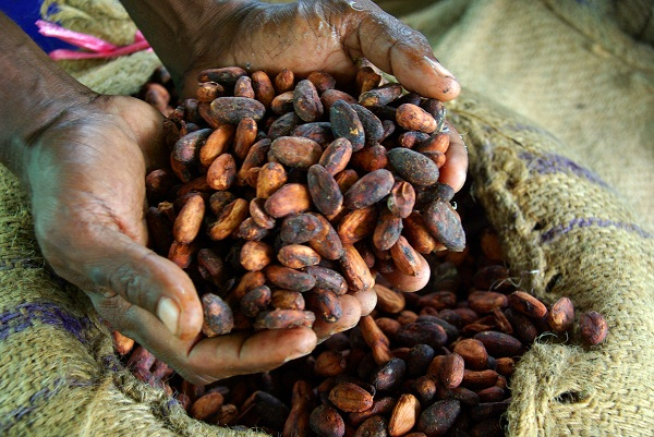 Cacao Beans as a currency