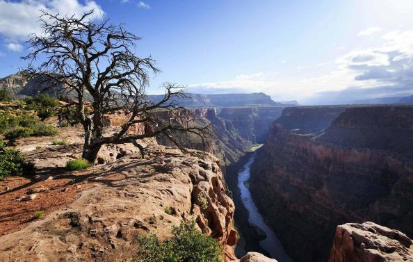 Image result for grand canyon north rim