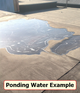 The Truth About Ponding Water Roof Coatings