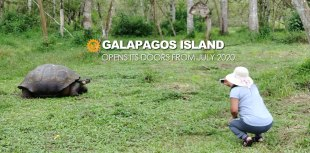 Galapagos Post Covid opens its doors from july