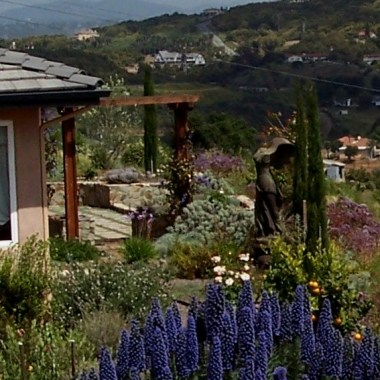 Sustainable Mediterranean Landscape In Bonsall