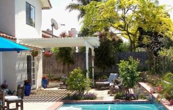 Pool garden after renovation
