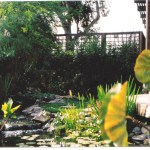 water-feature-escondido-landscape-design