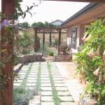 Planters dividing spaces
