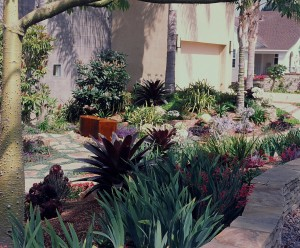 Drought Resistant Landscaping with Xeriscape Designs in San Diego