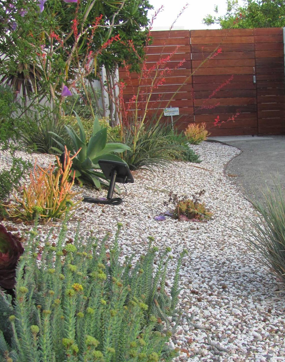 Sustainable landscape design celebrating california at for Sustainable landscape design