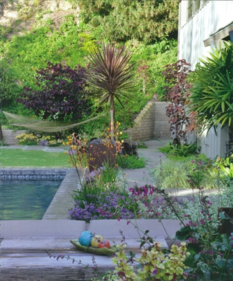 Garden of the Year 2013 in late afternoon