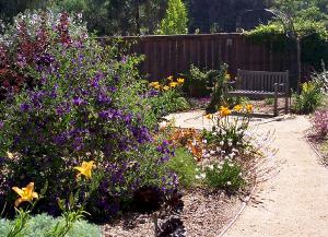 Fait back garden path and bench crop