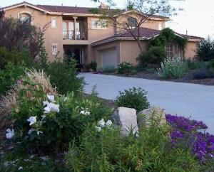 beautiful garden path to front door