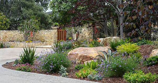balancing plants with hardscapes