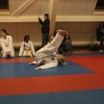 hapkido examen emmeloord 2013