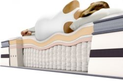 Plush Mattresses Offer A Fair Amount Of Give To Conform Your Body Yet Still Providing Ample Support You Without Having That Feeling Sinking In Too