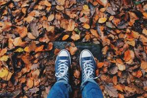 Is the fall an answer to how far in advance should you plan a move?