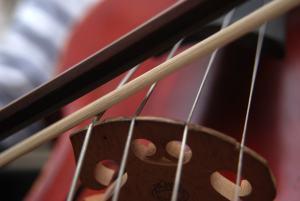 A close-up of a cello.