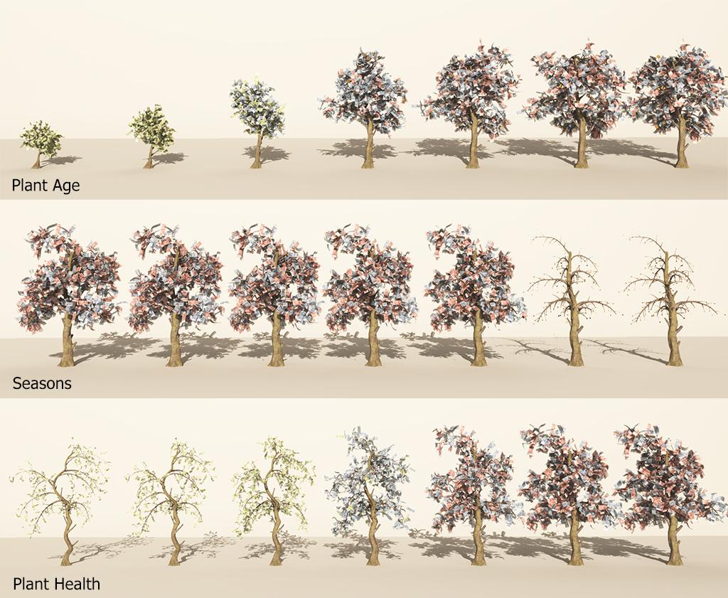 moneytree-season