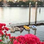 Brisbane River side