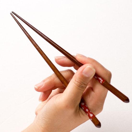 How To Use Chopsticks お箸の使い方