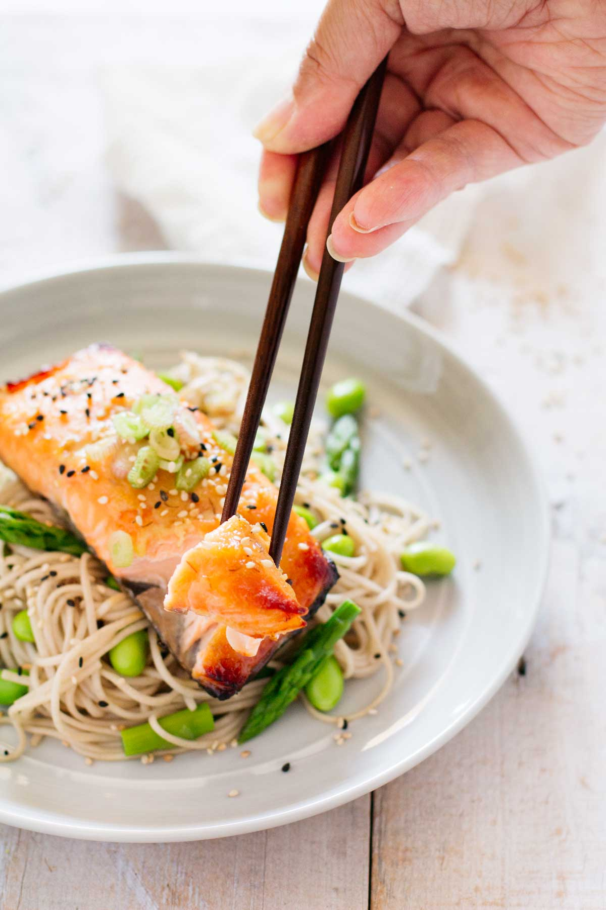 Ingredients In An Airtight Container Or A Ziplock Bag, Add The Salmon And  Marinate,