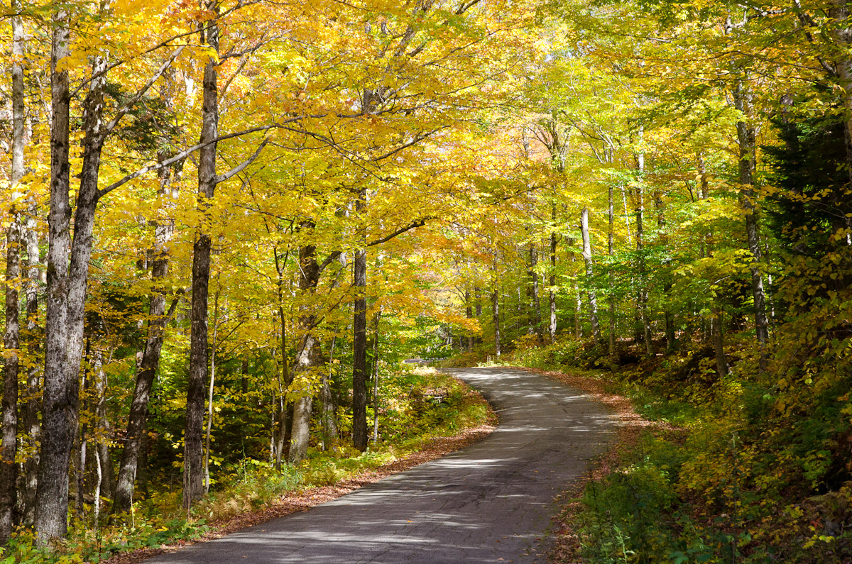 Fall Hills Wallpaper New England Fall Color