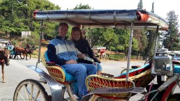 A buggy ride around the island.