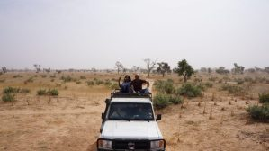 Kouré Park Niger