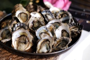 Fresh oysters from Mueang district