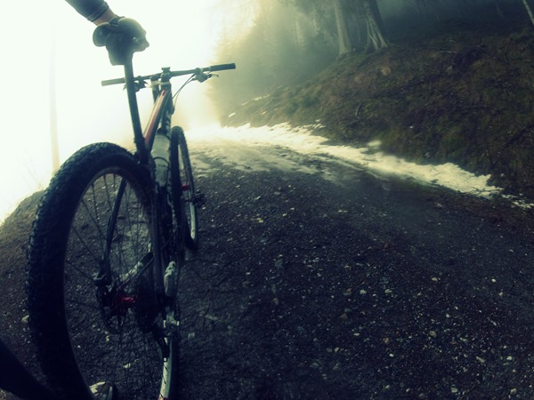 Patscherkofel Mountain Bike trail from Igls