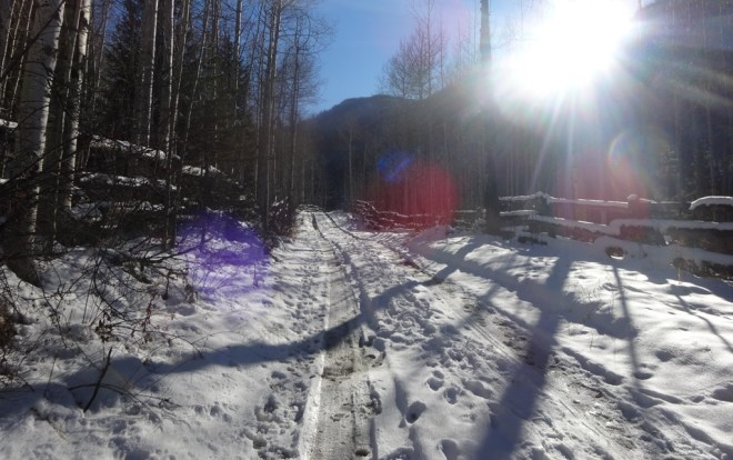 This road heads up to Barietta Cabin; a gold-rush era mining site