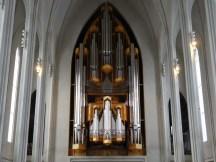 The biggest organ I've ever seen