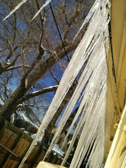 Freeze/thaw cycles lead to some great icicles. Some of them were close to touching the ground