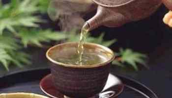 Essiac Tea Cures Leukemia and a Cat's Cancer!