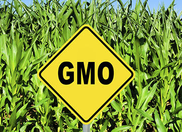 Consumer Reports finds hidden GMOs in common foods