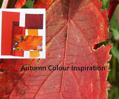 autumn-inspiration-sm