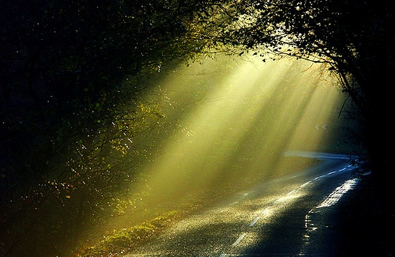 Image result for walking in the light, pictures