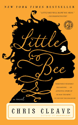 Little Bee Summer Reading