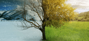 290.Seasons-Are-Changing_870x400_1-870x400