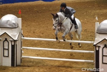 Horse Jumping - Brandon Fair