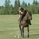 Trina Maus - Global TV Playing Polo