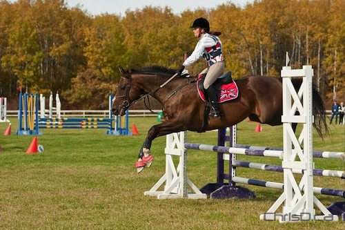 The Manitoba Horse Council held the second annual Manitoba Equestrian Championship (East vs. West) at Birds Hill Park over the weekend. (TED GRANT / CHRISD.CA)