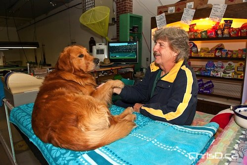 Winnipeg Beach Boardwalk Station owner Ken Muracz hangs out with his golden retriever, Zak, on Saturday, September 4, 2010. Many stores in the resort town north of Winnipeg closed up for the year last weekend. (TED GRANT / CHRISD.CA)