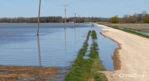 Water begins to flow over Road 32 West on Sunday, May 15, 2011 about one kilometre east of where the cut in the dike was made at Hoop and Holler Bend near Portage la Prairie. (STAN MILOSEVIC / MANITOBAPHOTOS.COM)