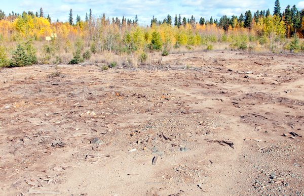 Grass is cleared from Grass River Park  in September 2011 at the Spruce Point mine site. (WILDERNESS COMMITTEE)