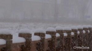 Snow Posts
