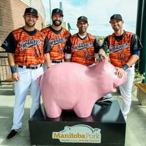 Winnipeg Goldeyes Bacon Jerseys