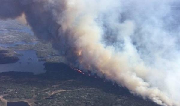 Caddy Lake Fire